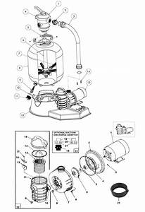 Wiring Diagram Database  Above Ground Pool Pump And Filter