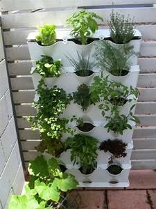 Blühende Zimmerpflanzen Pflegeleicht : pflegeleichte zimmerpflanzen auf pinterest ~ Michelbontemps.com Haus und Dekorationen