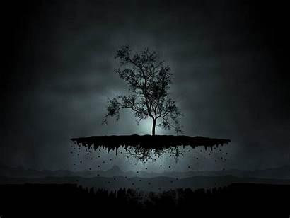 Floating Island Fantasy Trees Backgrounds