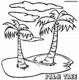 Palm Coloring Tree Pages Trees Island Drawing Adults Printable Sheets Sheet Step Popular Palmtree Birijus Getdrawings Template sketch template