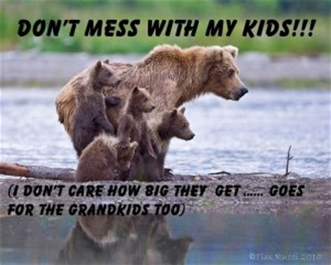 Dont Mess With Momma Bear Quotes