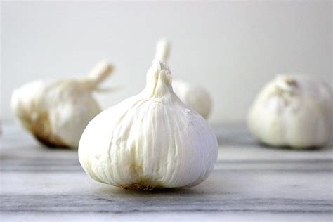 garlic cloves roasted garlic