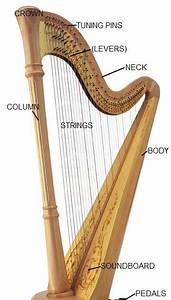 Hannah The Harpist  A Diagram Of The Harp