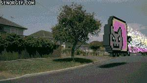 Cat Man GIF - Find & Share on GIPHY