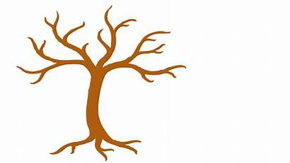 Leaves Tree Branches Clipart Tall Clip Trunk