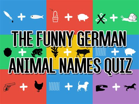 The Funny German Animal Names Quiz LearnOutLive