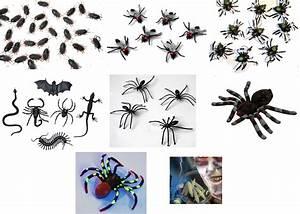 Können Kakerlaken Fliegen : tiere gruseltiere deko halloween party spinnen kakerlaken ~ Watch28wear.com Haus und Dekorationen