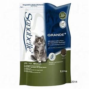 Sanabelle 10 Kg : lot sanabelle 2 x 10 kg croquettes pour chat zooplus ~ Orissabook.com Haus und Dekorationen