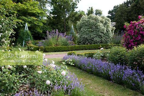 Gap Gardens  Formal Rose Garden With Lavender Lined