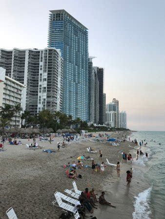 Tiki Hut Prices Miami by Coconuts Tiki Bar Miami Restaurant Reviews Phone