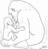 Coloring Gorilla Mother Playing Printable Mountain Mom Template Drawing Gorillas Tarzan Sloth Face Supercoloring Gorila Para Colorear Mama sketch template
