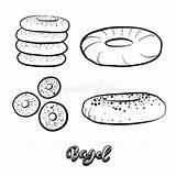 Bagel Drawing Sketch Illustration Vector Dreamstime Yeast Drawn Hand Illustrations Vectors sketch template