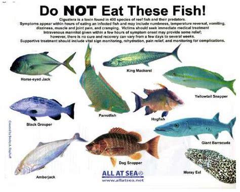 hannah  fiji poison  fish    dont eat