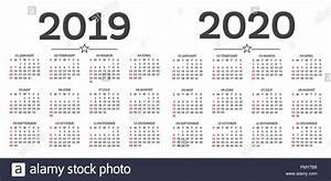 Calendario, 2019, 2020, Isolati, Su, Sfondo, Bianco, Inizia, Settimana, Da, Domenica, Illustrazione
