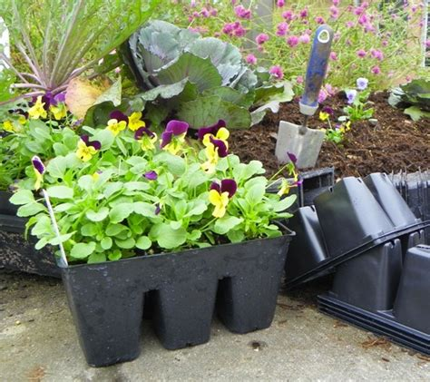 Recycling Plastic Plant Pots And Containers North