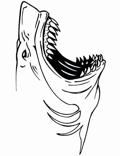 Shark Coloring Jaws Pages Colouring Mouth Outline