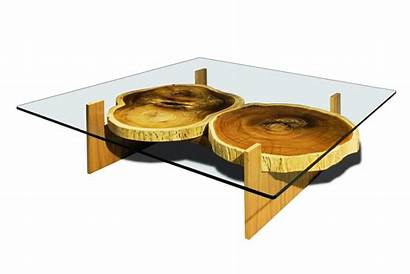 Coffee Table Tables Glass Unique Unusual Rustic