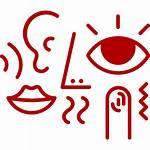 Senses Five Icons Cartoon Noun Communicate Ways