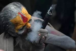 Why is Lord Shiva often depicted as smoking 'chillum ...
