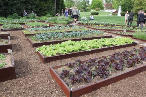 white house kitchen garden used to promote nutrition