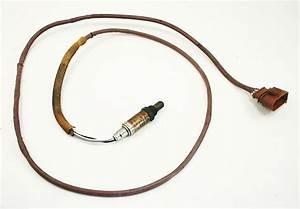 Lh Lower O2 Oxygen Sensor 98-01 Audi A6 C5