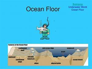 Ppt - Ocean Floor Powerpoint Presentation  Free Download