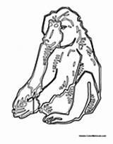 Baboon Sade Bijou Lifetime Pass sketch template