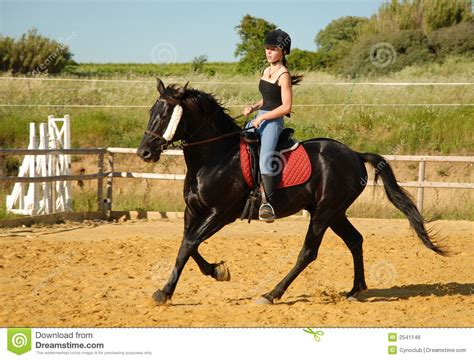 riding horse adolescente cavalo chody jazdy trabalhando teen konia konnej horseback teoria teenager young history arbeitspferd jugendlich woman ride koniu
