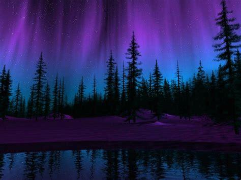 Purple Night Wallpapers - Wallpaper Cave