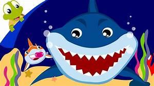 baby shark song animal songs with lyrics doovi
