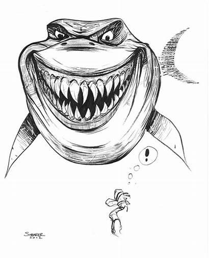 Bruce Nemo Finding Drawings Sketch Disney Shark