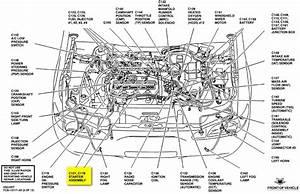 Bestseller  Zx2 Manual Or Standard Transmission Diagram