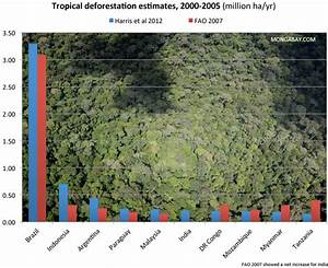Deforestation Accounts For 10 Percent Of Global Carbon