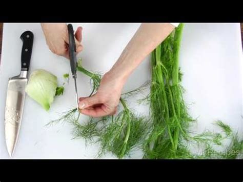 How To Prepare Fennel Youtube