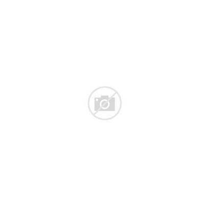 Vegetables Vector Fruits Shelves Vegetable Graphics Clipart