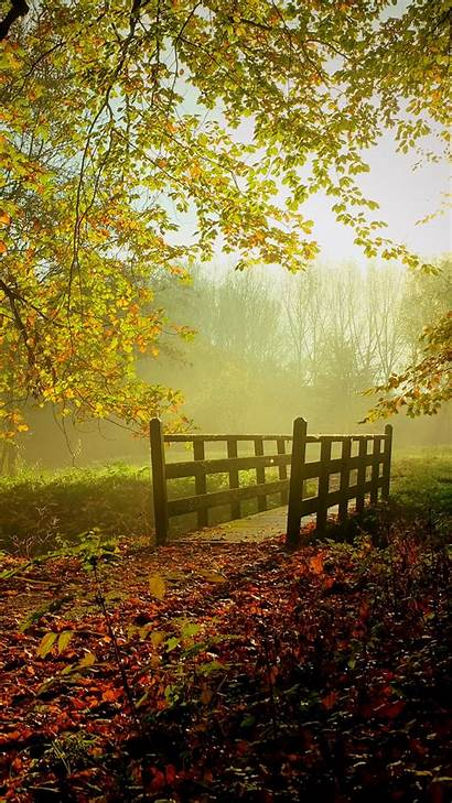 Fall Sunny Wallpapers 1080 1920 Iphone 1280