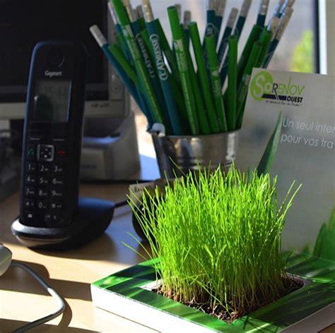 plante de bureau plante de bureau publicitaire un cadeau client spécial