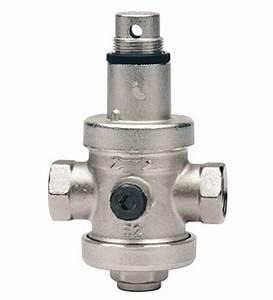 Limiteur De Pression D Eau : opticlimate r ducteur de pression d 39 eau avec manom tre ~ Dailycaller-alerts.com Idées de Décoration