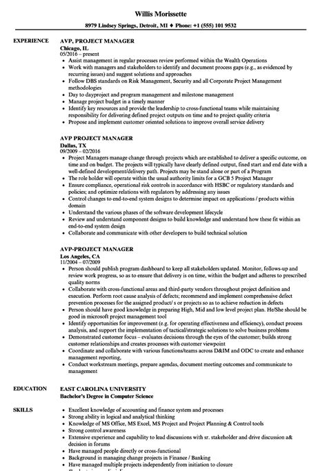 Project Manager Resume Exle by Avp Project Manager Resume Sles Velvet