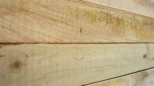 Klo Mit Wasserstrahl : sawn shiplap cut siding lumber search for silvertop ash cladding shiplap sawn display ~ Sanjose-hotels-ca.com Haus und Dekorationen