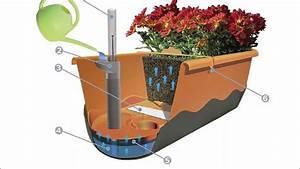 Blumenkasten Mit Wasserspeicher : balkonk sten und blumenampeln mit wasserspeicher von ~ Lizthompson.info Haus und Dekorationen