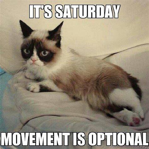 Saturday Memes Funny - happy saturday quotes funny quotesgram