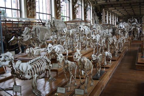 Jardin Des Plantes Mus E by Mus 233 Um National D Histoire Naturelle Museum In