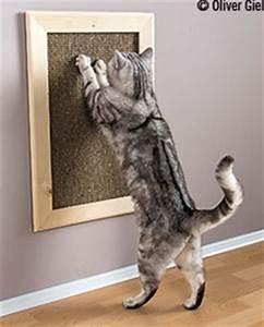 Katzen Fernhalten Von Möbeln : do it yourself f r ihre katze kratzbrett gu ~ Michelbontemps.com Haus und Dekorationen