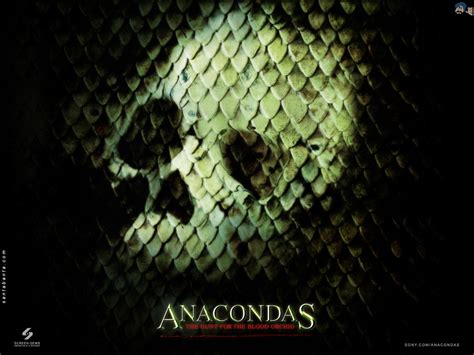 anacondas  wallpaper