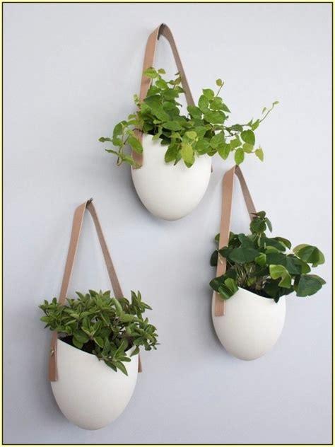 plant pot design ideas best flower pot ideas with latest front door flower pots decorationy