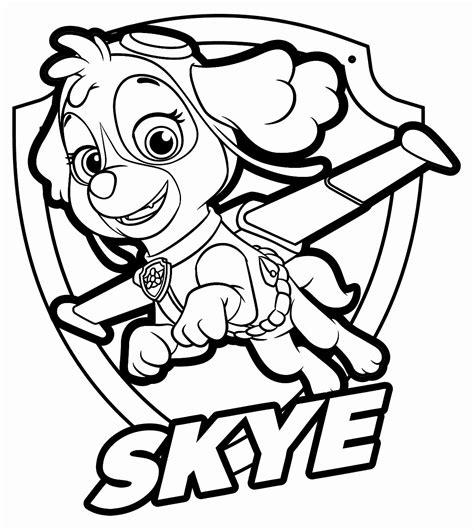 Paw Patrol Sky Coloring Sheets Pages Sketch Coloring Page