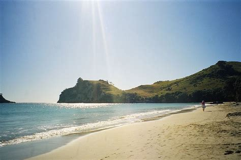 coromandel peninsula travel guide  wikivoyage