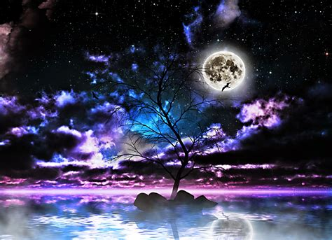fantasy night full moon tree  middle  river pictures