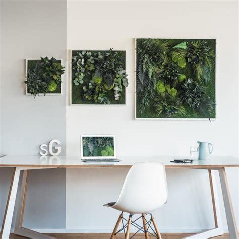pflanzen zum aufhängen garten im quadrat stylegreen pflanzenbild aus moos und farnen echte pflanzen nat 252 rlich